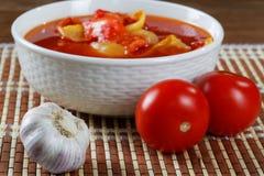 Todavía vida con los tomates y el ajo Fotografía de archivo