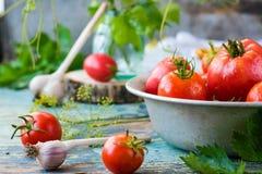 Todavía vida con los tomates y el ajo maduros Imagen de archivo libre de regalías
