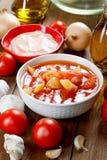 Todavía vida con los tomates y la salsa Fotografía de archivo
