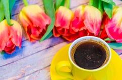 Todavía vida con los tulipanes Fotografía de archivo libre de regalías