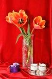 Todavía vida con los tulipanes Foto de archivo libre de regalías