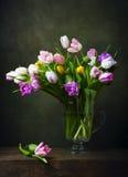 Todavía vida con los tulipanes coloridos Imágenes de archivo libres de regalías