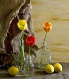 Todavía vida con los tulipanes en botella Fotos de archivo libres de regalías