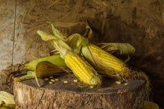 Todavía vida con maíz Imágenes de archivo libres de regalías