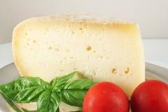Todavía vida con queso y albahaca Fotos de archivo