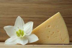 Todavía vida con queso y una flor blanca en la tabla de madera Fotos de archivo