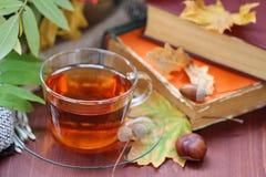 Todavía vida con té, libros y hojas en otoño Foto de archivo