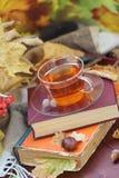 Todavía vida con té, libros y hojas en otoño Foto de archivo libre de regalías
