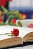 Todavía vida con té, libros y rosas Imagenes de archivo