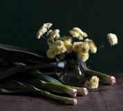 Todavía vida con un arqueamiento y los crisantemos Imagen de archivo libre de regalías