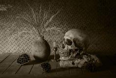 Todavía vida con un cráneo. fotos de archivo