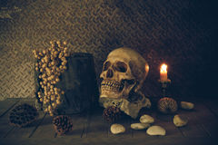 Todavía vida con un cráneo imagen de archivo libre de regalías