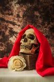 Todavía vida con un cráneo humano con una rosa falsa del blanco Fotos de archivo libres de regalías