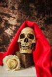 Todavía vida con un cráneo humano con una rosa falsa del blanco Fotos de archivo