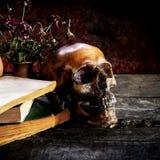 Todavía vida con un cráneo y un libro en de madera Fotografía de archivo
