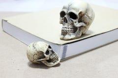 Todavía vida con un cráneo y un libro en la tabla de madera Fotos de archivo