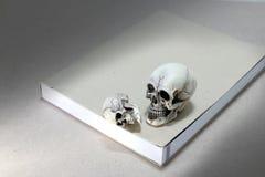 Todavía vida con un cráneo y un libro en la tabla de madera Imagenes de archivo