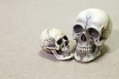 Todavía vida con un cráneo y un libro en la tabla de madera Foto de archivo