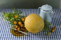 Todavía vida con un melón amarillo Fotografía de archivo libre de regalías