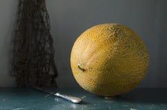 Todavía vida con un melón amarillo Fotos de archivo