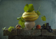 Todavía vida con un melón amarillo Fotografía de archivo