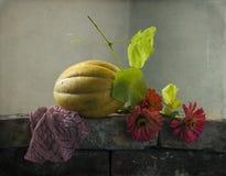 Todavía vida con un melón amarillo Foto de archivo