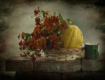 Todavía vida con un melón amarillo Imagen de archivo libre de regalías