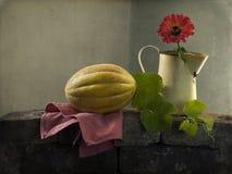 Todavía vida con un melón amarillo Imágenes de archivo libres de regalías