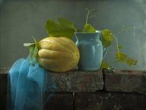 Todavía vida con un melón amarillo Foto de archivo libre de regalías