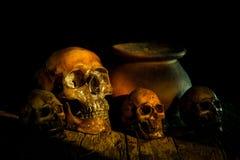 Todavía vida con un pote del cráneo y de arcilla, Foto de archivo