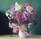 Todavía vida con un ramo de polemonio rosado de diversas variedades Imagenes de archivo