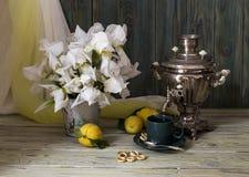 Todavía vida con un samovar y los iris Imagen de archivo