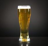 Todavía vida con una cerveza de barril por el vidrio Imagen de archivo