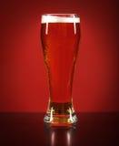 Todavía vida con una cerveza de barril por el vidrio Imagen de archivo libre de regalías