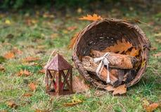 Todavía vida con una cesta de otoño de los registros Imagen de archivo libre de regalías