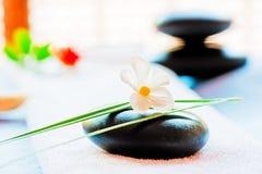 Todavía vida con una piedra negra y una flor Imagenes de archivo