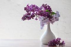 Todavía vida con una rama de la lila Fotografía de archivo