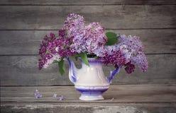 Todavía vida con una rama de la lila Fotografía de archivo libre de regalías