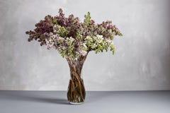Todavía vida con una rama floreciente de la lila tabla y fondo grises Foto de archivo