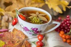 Todavía vida con una taza de té Imagenes de archivo
