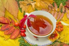 Todavía vida con una taza de té Foto de archivo