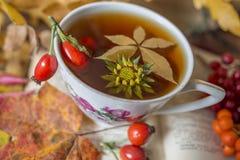 Todavía vida con una taza de té Imagen de archivo