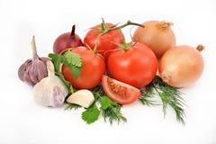 Todavía vida de cebollas y del ajo de los tomates con verdes en una pizca Fotografía de archivo