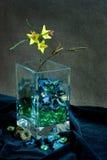 Todavía vida de flores secadas imágenes de archivo libres de regalías