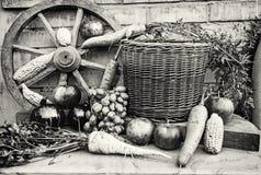 Todavía vida de frutas y verduras, descolorida Fotos de archivo