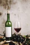 Todavía vida de la botella de vino rojo Fotos de archivo