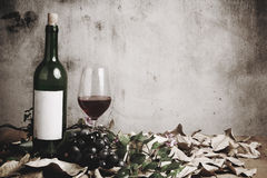 Todavía vida de la botella de vino rojo Fotografía de archivo libre de regalías
