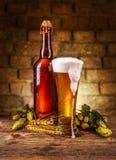 Todavía vida de la cerveza Imagen de archivo libre de regalías