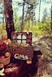 Todavía vida de la comida campestre del otoño Fotos de archivo libres de regalías