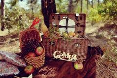 Todavía vida de la comida campestre del otoño Imágenes de archivo libres de regalías